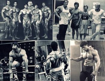 bodybuilding bleke prizkak